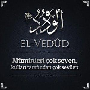 El_vedud_00111