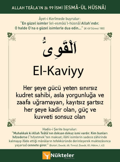 el_kaviyy_00014