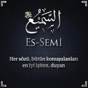es_semi_01444