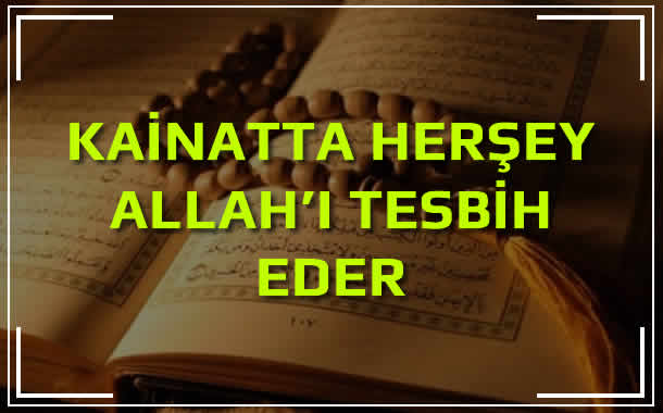 Her Şey Allâhü Teâlâ'yı Tesbih Eder