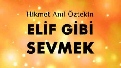 Photo of Elif Gibi Sevmek Şiiri – Hikmet Anıl Öztekin